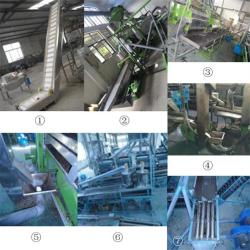 Factory Selling Raw Cashew Nut Production Line