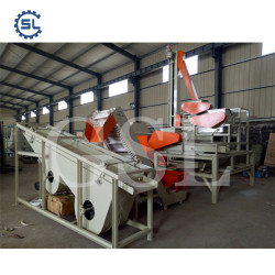 Plant Price Nuts Cracking/Separating Machine for Almond