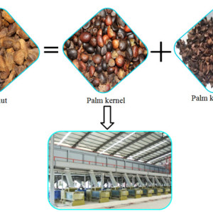 Latest Technology Automatic palm oil processing machine