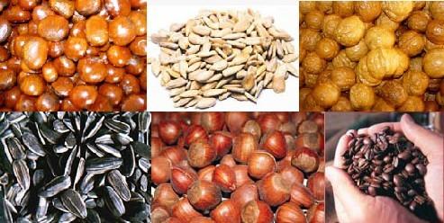 walnuts baker  0086-15890067264
