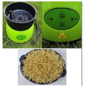 hot-selling Bean sprout machine 0086-13939083462