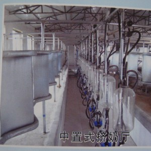 milking parlour for 8 cows    0086-15890067264