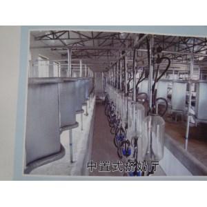 cows milking parlour  machine   0086-15890067264
