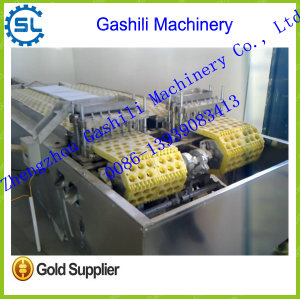stainless steel automatic cherry pitting machine with competitive price