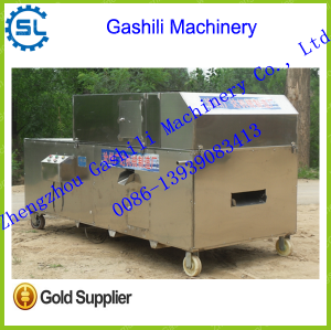 stainless steel automatic date seeds removing machine
