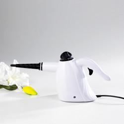 Multifuncion Limpiador de vapor ZQ015