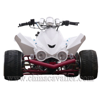 110CC RACING QUAD   CAST02-110CC