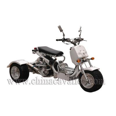 three wheels motorcycles   CATR01-200CC