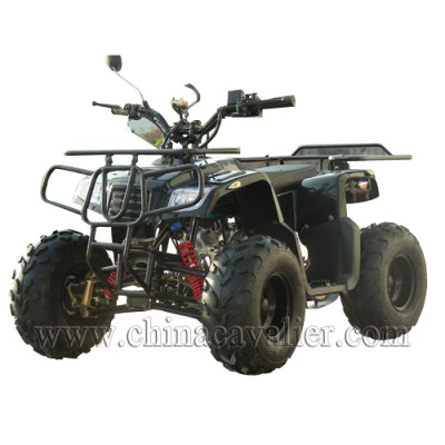 NEW ATV  CAST01-70CC
