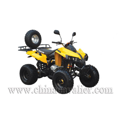 ATV(QUAD)   CAST02-250CC