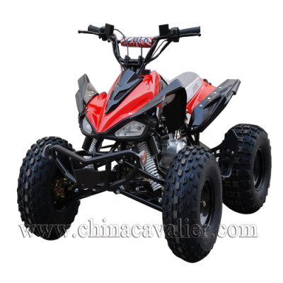 CHINA ATV    CAST06-110CC
