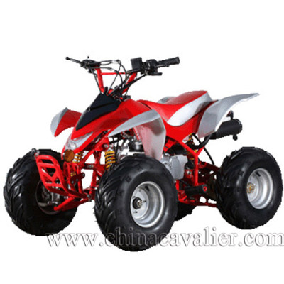 SPORTS ATV   CAST07-110CC