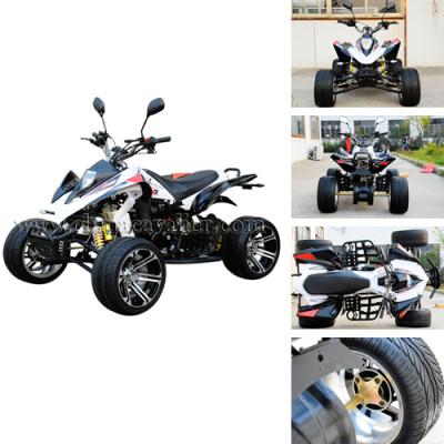 2010 NEW  RACING ATV
