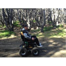 drive in grassplot