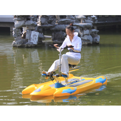 2012 pedal boat water bike
