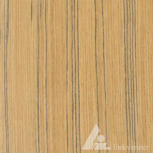 خشب الساج، tb.019s