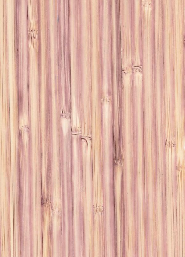 voilet bambú tb.v