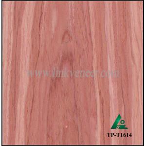TP-T1614, recon tulip face veneer A grade manufacturer supply