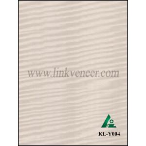 KL-Y004