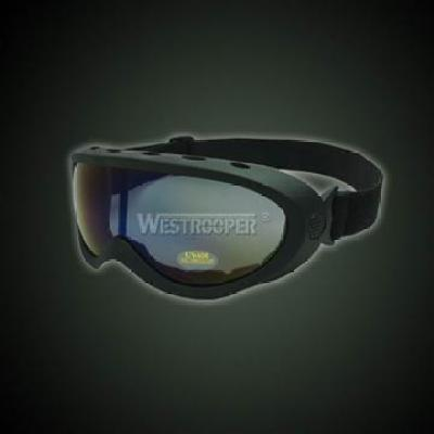 TACTICAL GOGGLE