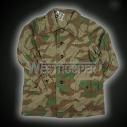 WH camo Luftwaffe field coat