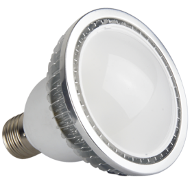 LED PAR30 Light 6W /12W