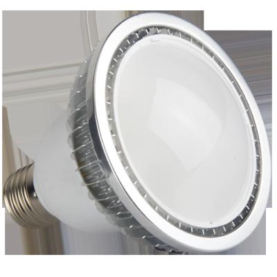 LED PAR30 Light 6W /12W