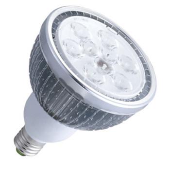 LED PAR38 Light -9W/12W