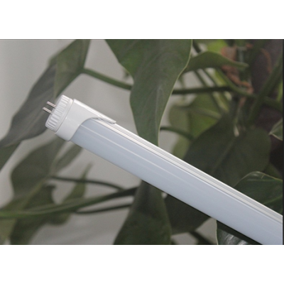 LED T8 Tube  (600mm--8W/10W)