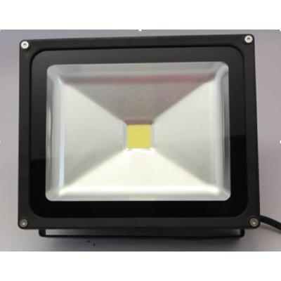 LED Flood light (AL-FLCOB-30W )
