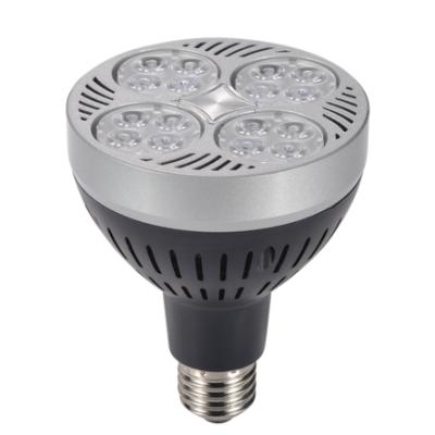 LED PAR30 Light 35W