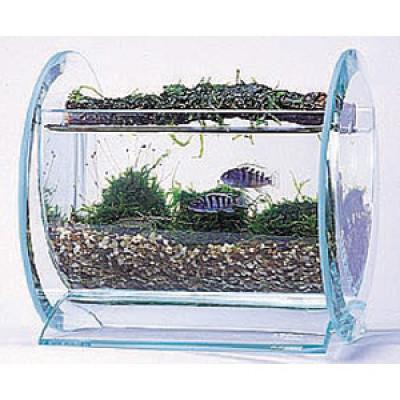 Clear Acrylic Fish Tank