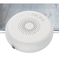 WIRELESS GAS DETECTOR MIR-GA100