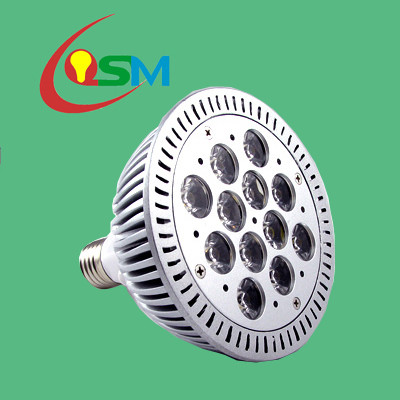led spot light(OSM-SHE27CW12*1W-FR)
