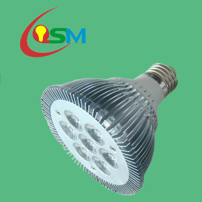 PAR 30 LED Spotlight 7W