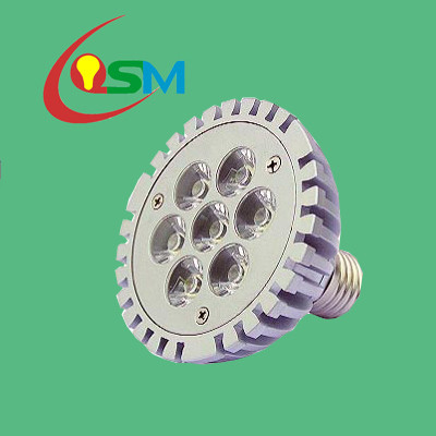 7W LED Spotlight