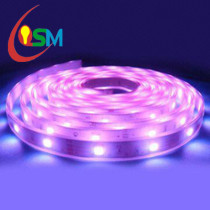 5050 Led strips