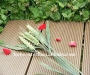 Plancher composé en plastique en bois d'intérieur/extérieur de panneau de plate-forme de wpc de garantie de QUALITÉ de /household de carrelages