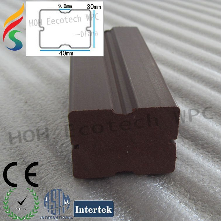 SDC16681.jpg
