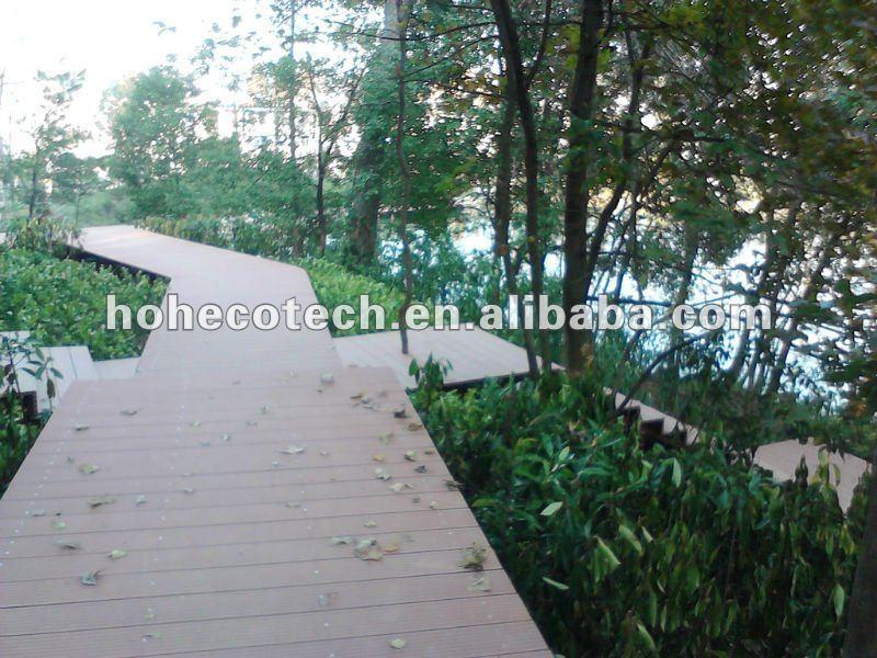 Camera_20111211_153609.jpg
