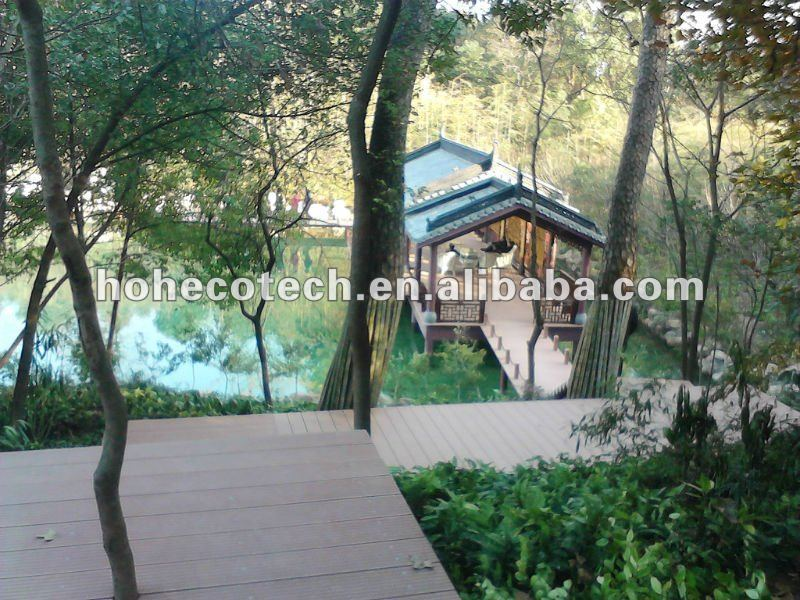 Camera_20111211_153534.jpg