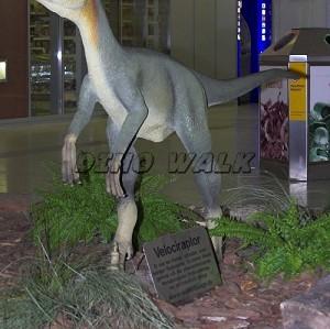 Animatronic Dinosaurs Model
