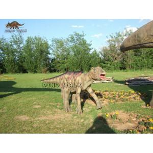 Psittacosaurus Animatronics
