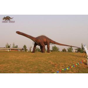 Adult Diplodocus alive