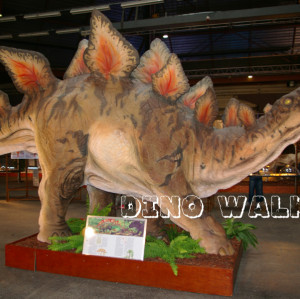 Life Size Stegosaurus modèle