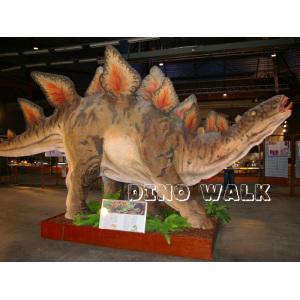 Life Size Stegosaurus Model