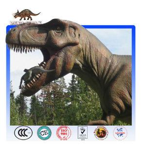 Forest Park Dinosaur Equipment