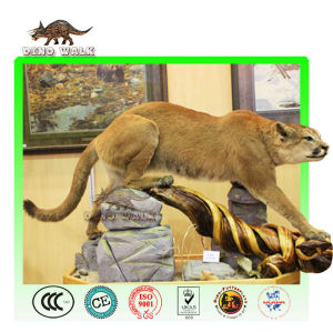 Animatronic Wild Cat
