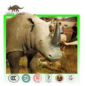 Real Size Animatronic Rhinoceros