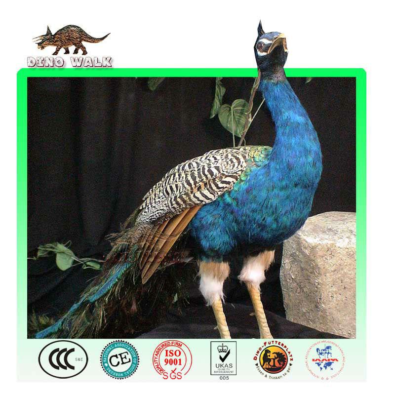 Artificial Peacock Animal Specimen